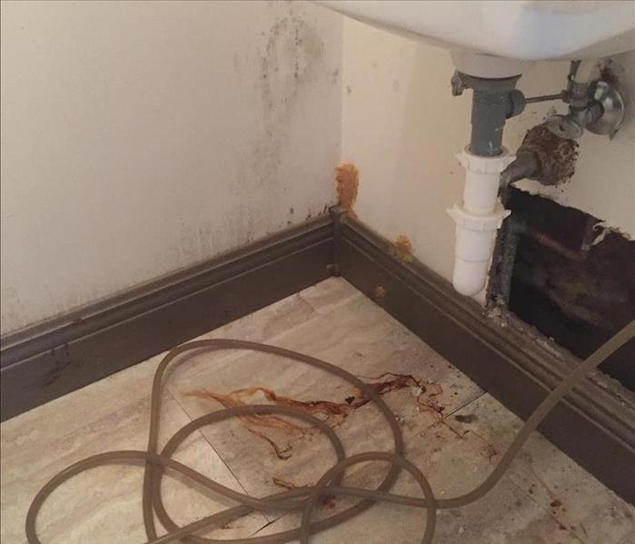 Flooded Townhouse in Melbourne, FL  Before