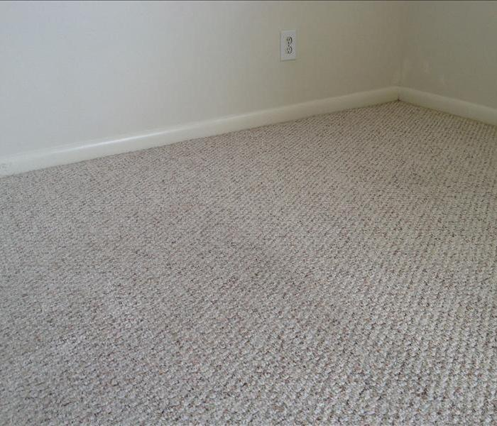 Melbourne Carpet Cleaning from Water Damage After