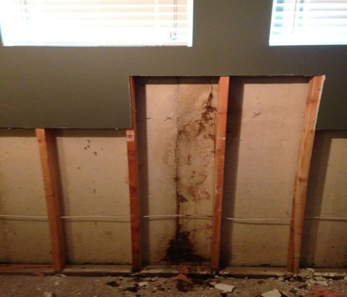 Mold Damage – Viera Office Before