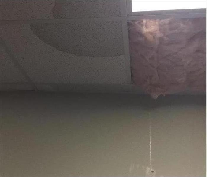 Water damage on the ceiling. One tile is missing, showing pink insulation.