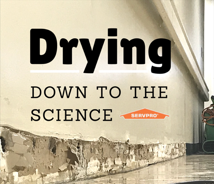 Why SERVPRO SERVPRO of West Brevard Has DRYING Down to a Science in Viera, Florida