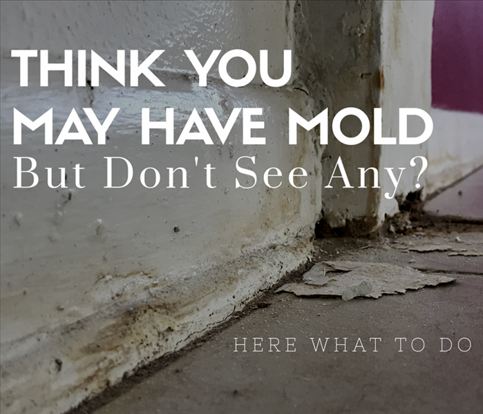 Mold Remediation Think You May Have Mold, But Can't See Any