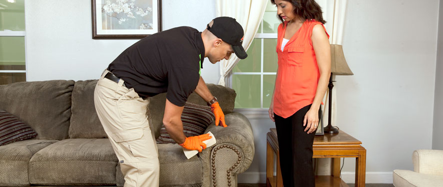 Viera, FL carpet upholstery cleaning